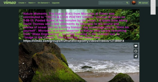 Nature-Moments-The-Ocean_Microdoc-Vimeo_Truty&LovePoetry_vic-sadot-screenshot-text_1257x653